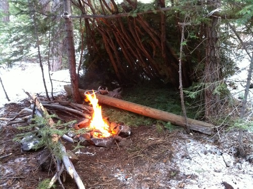 lean-to-woodland-shelter